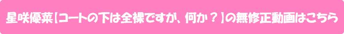 星咲優菜【コートの下は全裸ですが、何か?】の無修正動画はこちら
